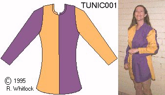 Picture of Tunic 001